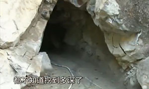 Deep spring forest Guangdong Province stealing tungsten ore provoke public anger