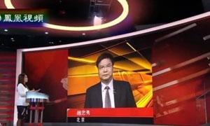 中国整合稀土业见成效