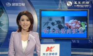 中国稀土被当做普通商品供应全球九成市场