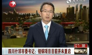 四川什邡市委书记:钼铜项目目前并未重启