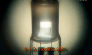 点击观看《Tungsten cycle of halogen tungsten lamp》